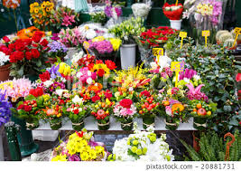 flowers for sale flowers for sale at a italian flower market in stock photo