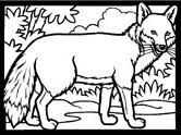 fox racing coloring pages fox coloring pages