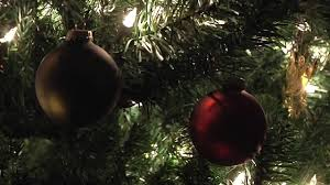 history of the christmas tree youtube