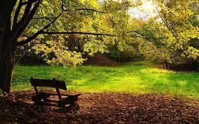 park bench 3d nature wallpaper
