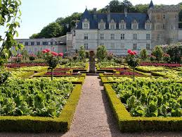 chateaux and wine around villandry