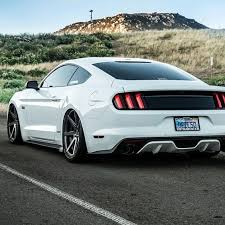 Ford Mustang Black Widow Ford Mustang Black Widow Cars Pinterest Ford Mustang Ford