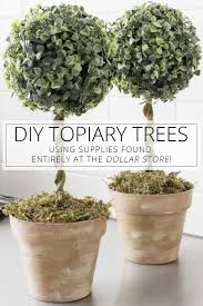 Topiary Frames Online Best 25 Topiary Trees Ideas On Pinterest Pine Cone Tree