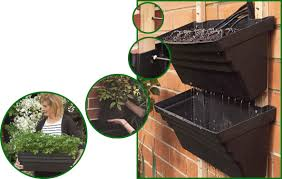 has anyone tried vertical gardening gardening forums