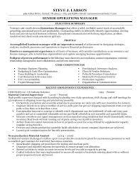 project scheduler resume steve larson resume