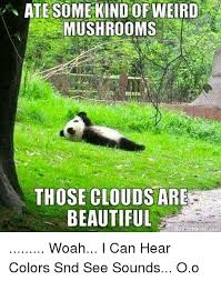 I Can See Sounds Meme - ate some kind of weird mushrooms those clouds are beautiful woah i