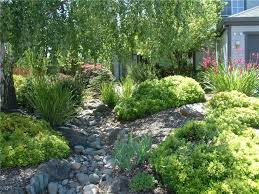 97 best dry creek bed french drain images on pinterest dry