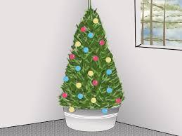 root ball christmas trees christmas lights decoration
