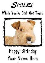 lakeland terrier dog happy birthday card smile teeth65 a5