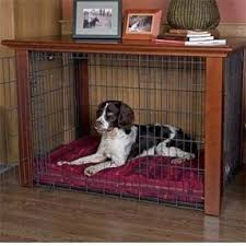 coffee table dog crate hollywood thing