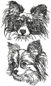 belgian shepherd embroidery design advanced embroidery designs papillon set dog breeds machine