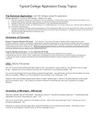 college admissions sample essay common application sample essays term paper service common application sample essays