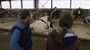chambre d agriculture tarbes en quoi consiste le métier de technicien de chambre d agriculture