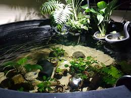 light over my indoor pond is kessil 160we going to be enough