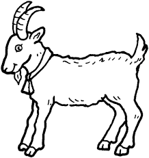 free coloring pages goats insider goat coloring pages billy page free printable 6321