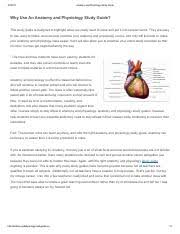Anatomy And Physiology Exercise 10 Exercise 10 The Appendicular Skeleton Pdf Review Sheet The