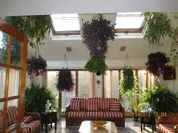 surinder u0027s indoor garden in new jersey fine gardening