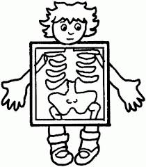 elegant and also stunning human body coloring pages regarding