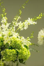 Nice Flowers Free Photo Blooming Beautiful Fresh Nice Flower Background Max Pixel