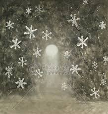 christmas backdrops christmas photo backgrounds and backdrops for family photos