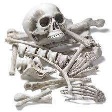 skeleton bones body parts halloween decoration graveyard decor