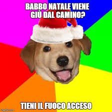 Advice Dog Meme Generator - advice dog meme imgflip