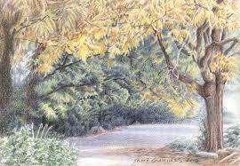 drawn landscape colour pencil pencil and in color drawn