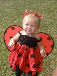 Lady Bug Halloween Costume Halloween Baby Contest Lady Bug