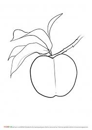 free printable coloring pages moona u201cfruits and berries u201d