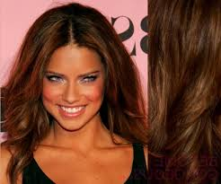 Highlight Colors For Brown Hair Celebrity Light Brown Hair Colors