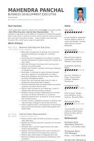 business management resume exles business development executive resume sles visualcv resume