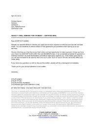 collection letter final template u0026 sample form biztree com