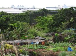contamination kadena air base u0027s dirty secret the japan times