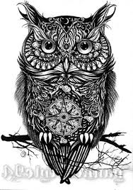 black and white owl designs attractive black ink owl