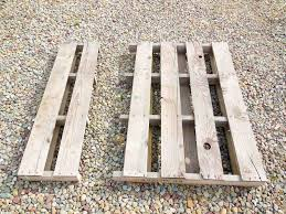 squash growing rack made out of a pallet