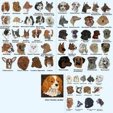 Types Of Dogs Types Of Dog Breeds With Names Dog Chart With Pictures Of Breeds U2013 Dog