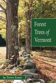Vermont forest images Forest trees of vermont t evans books jpg