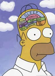 homer homer simpson u0027s brain motif phrenology pinterest brain