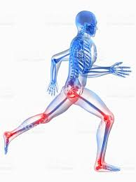 xray picture of the body showing joints in pain stock photo