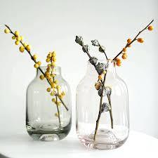Cylinder Clear Glass Vases Small Colored Glass Vases U2013 Carolinemeyersphotography Com