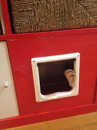 Expedit Shelving Unit by Expedit Shelving Unit Total Kitty Litter Disguise Ikea Hackers