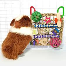 bundle and save with our original sets for guinea pigs