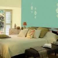 100 asian paint colour shade with code asian paints