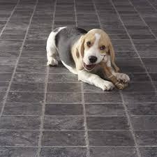 flooring for dogs flooring designs