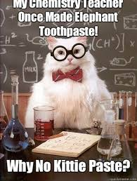 Toothpaste Meme - my chemistry teacher once made elephant toothpaste why no kittie
