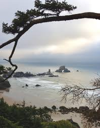 Seeking Oregon Coast Cannon Inn Area Attractions At Point Inn