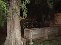 25 best haunted house attractions ideas on pinterest asylum san
