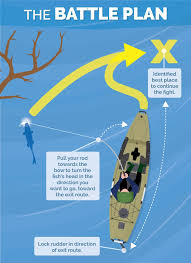 1282 best fishing infographics images on fishing
