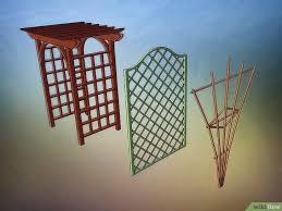 Vertical Garden Adalah - 3 cara untuk membuat taman vertikal wikihow