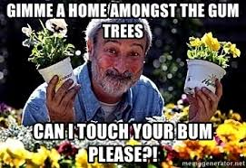 Can I Touch It Meme - gimme a home amongst the gum trees can i touch your bum please